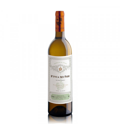 Kaiken Terroir Series Torrontes (750ml)