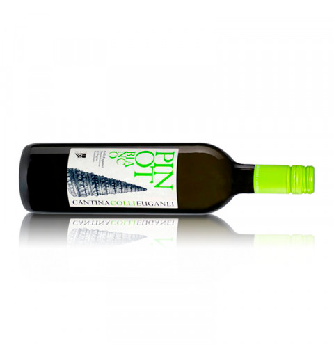 Cantina Colli Euganei Pinot Bianco DOC