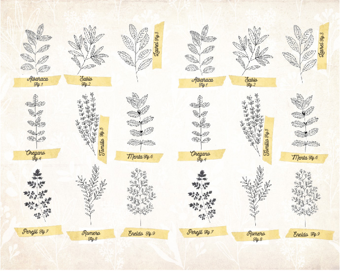 Botánicos en el Vermouth