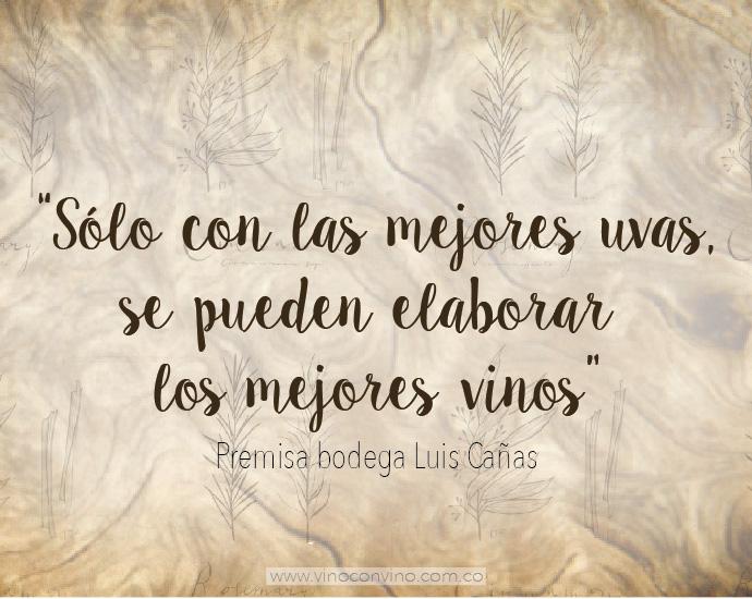 Premisa Bodega Luis Cañas