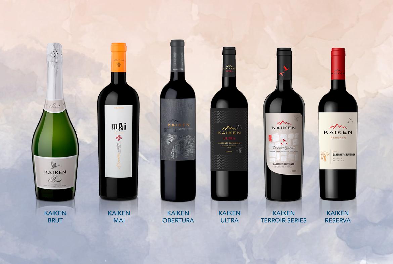 Líneas de vino Kaiken