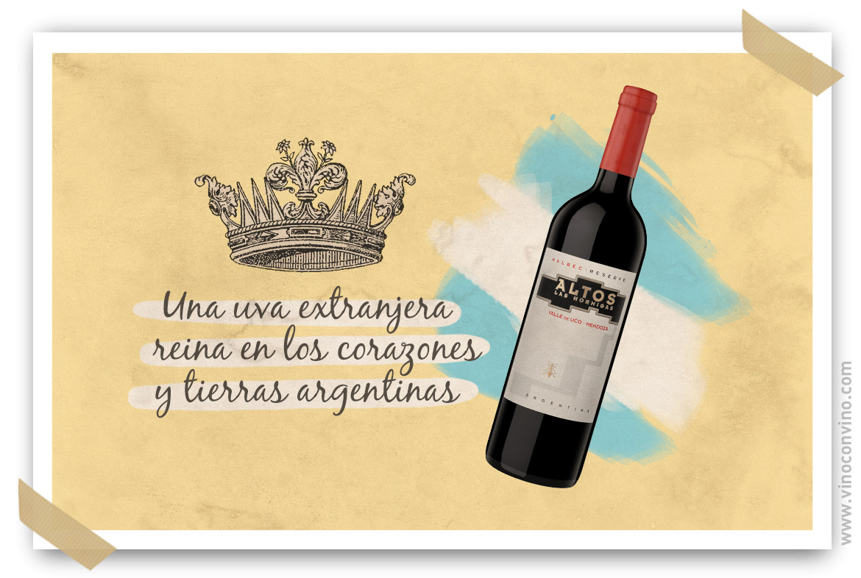 El Día Mundial del Malbec celebremos la uva extranjera que reina en Argentina