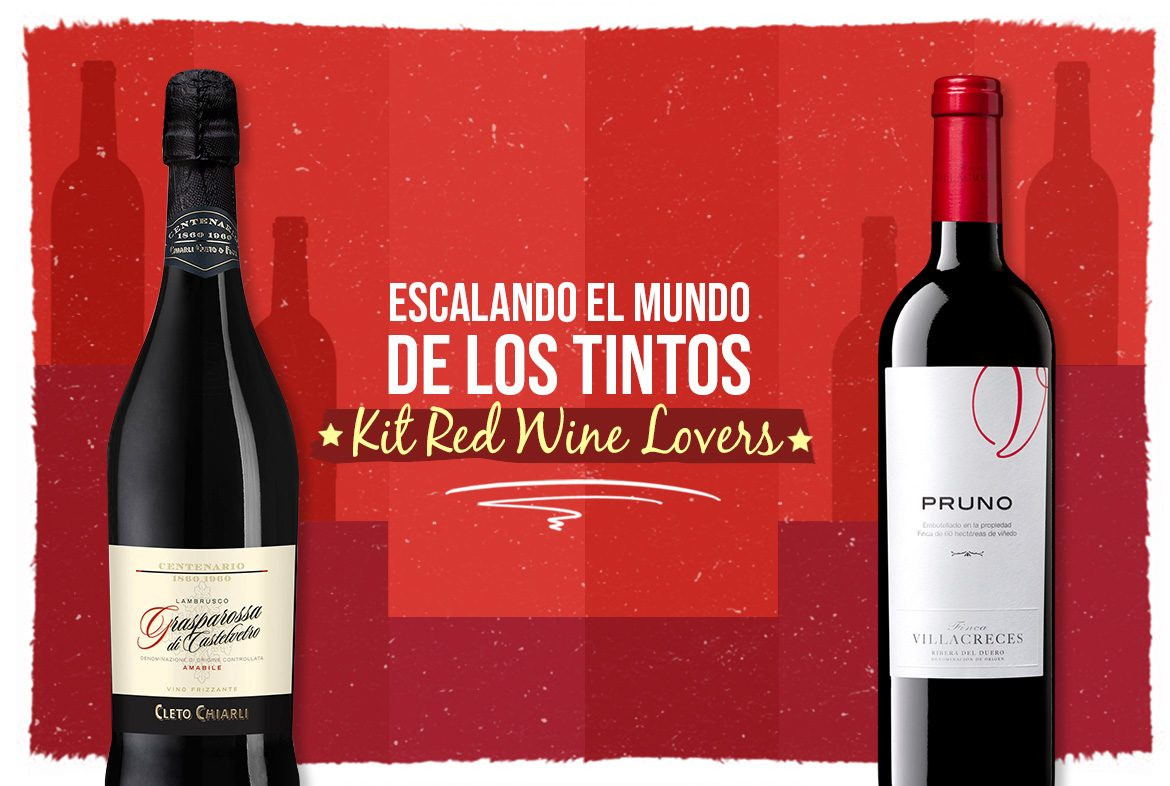 Vino tinto: Kit Red Wine Lovers