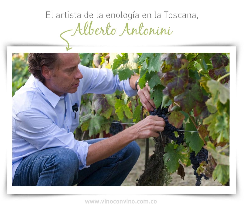 El enólogo Alberto Antonini