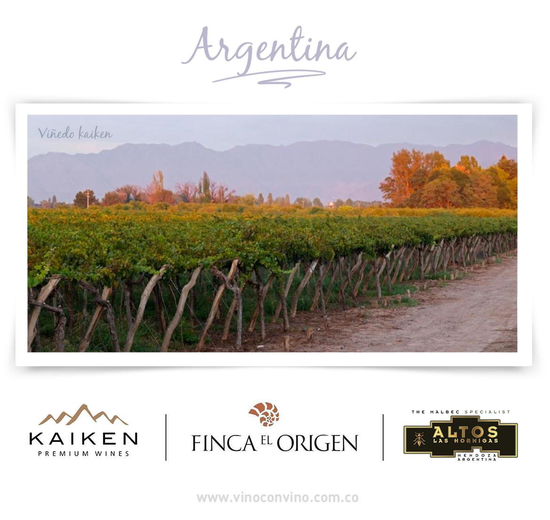Nuestras bodegas de vino argentinas