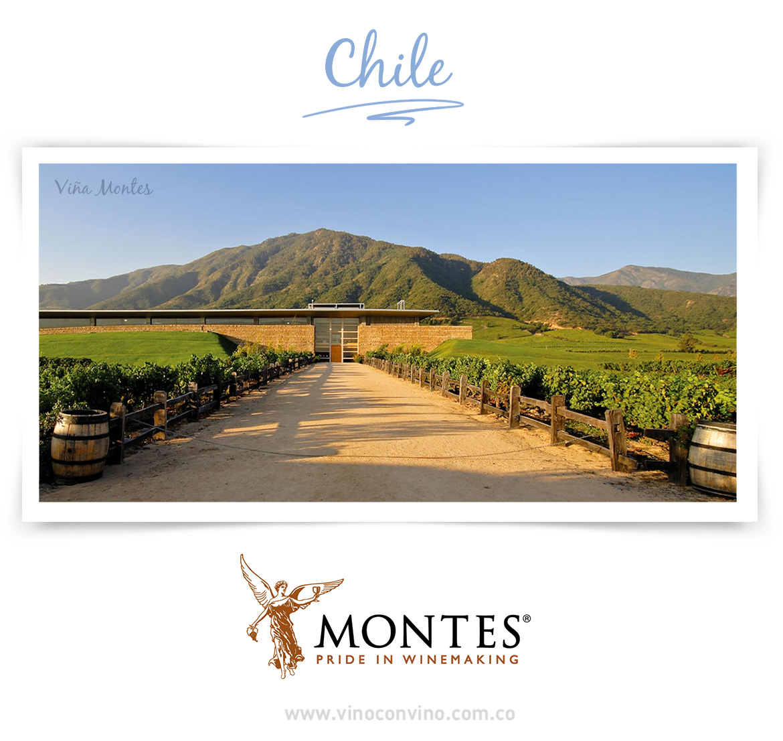 Nuestra bodega de vino chilena