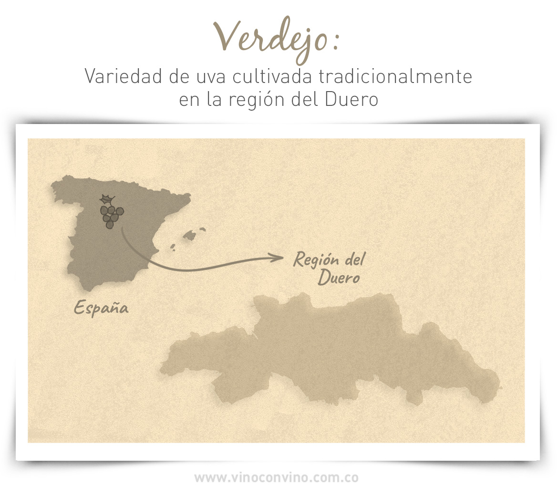 Cepa Verdejo cultivada en la región de Duero