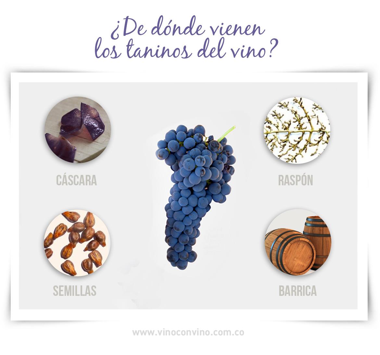 ¿De dónde vienen los taninos del vino?