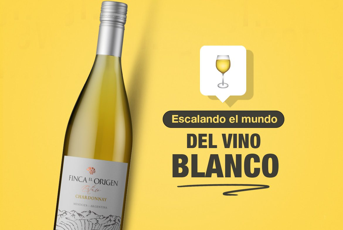 Kit exploradores del vino blanco