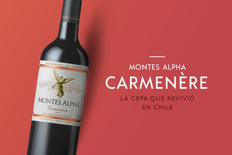 Montes Alpha Carmenere: Vino recomendado