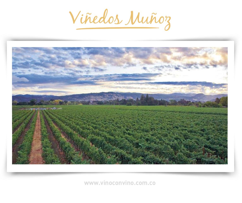 Muñoz, viñedos y bodegas