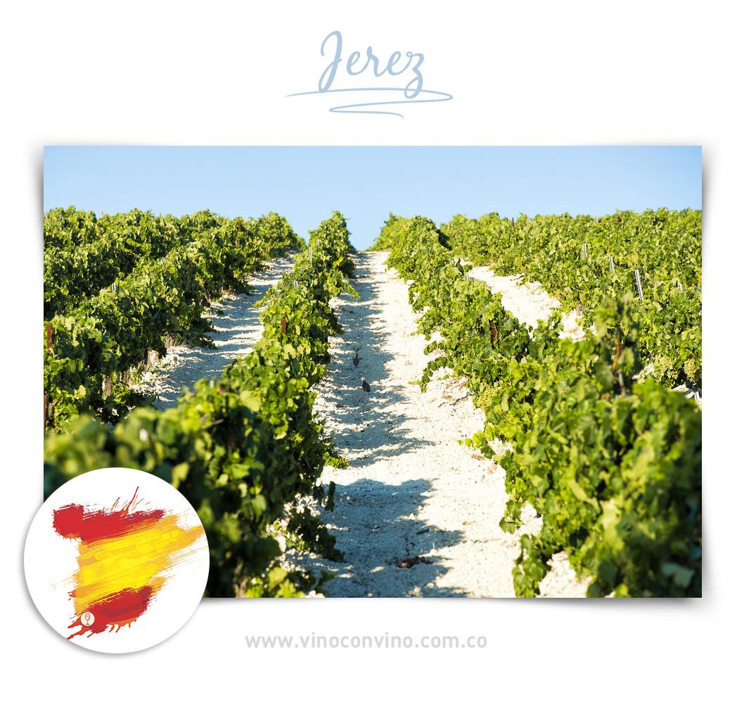 Jerez - Región de vino en España