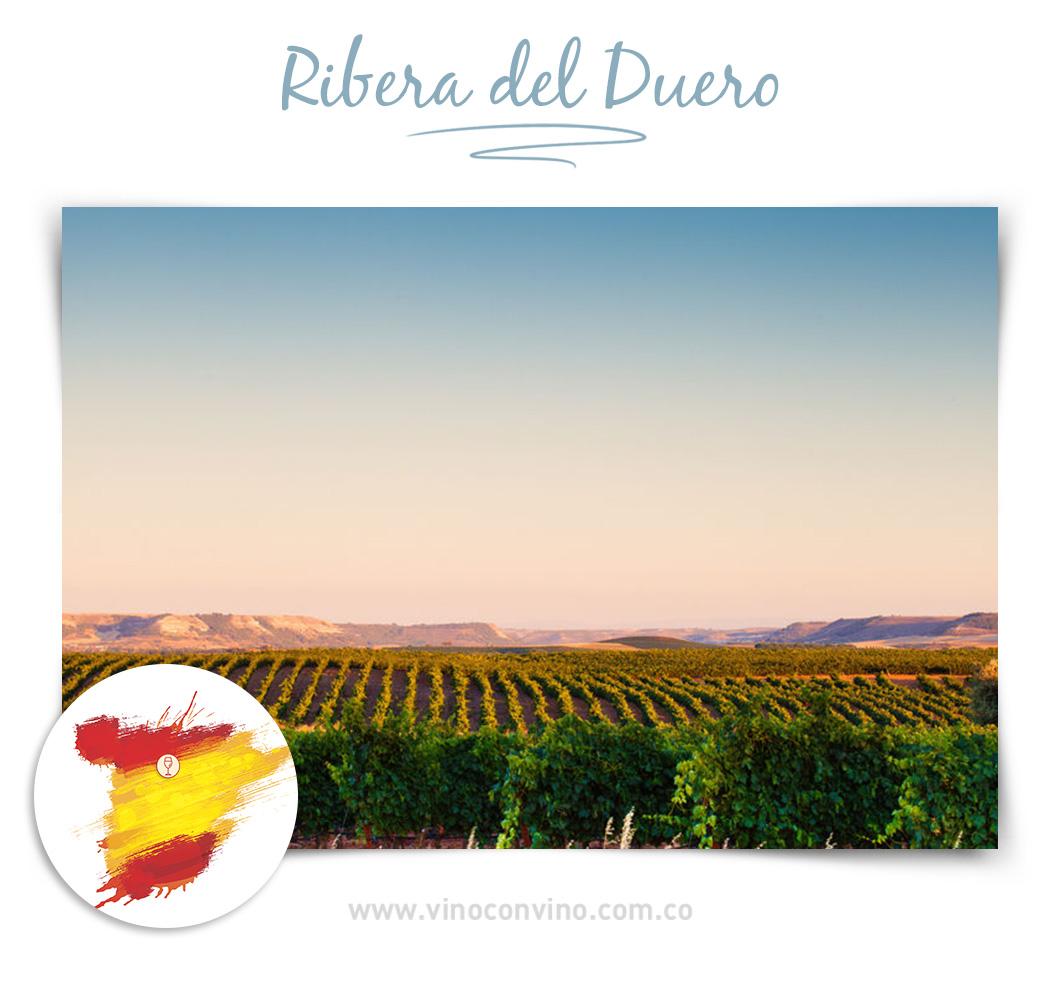 Ribera del Duero. Regiones de vino en España