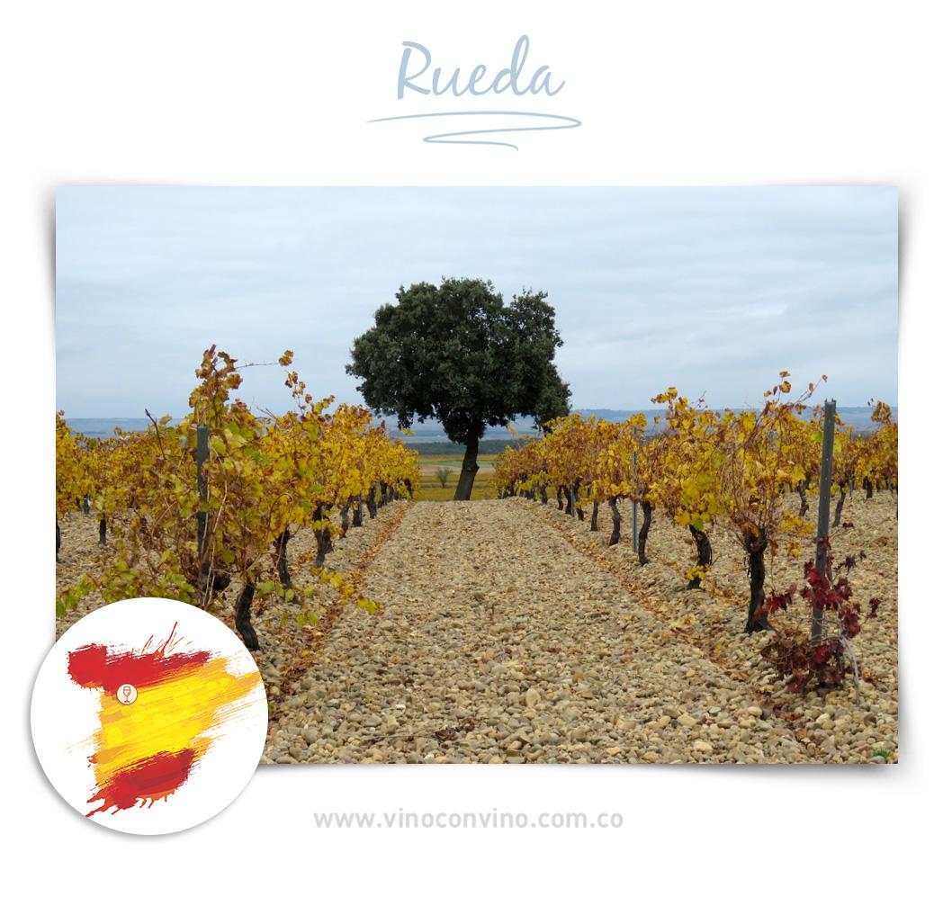 Rueda - Región de vino en España