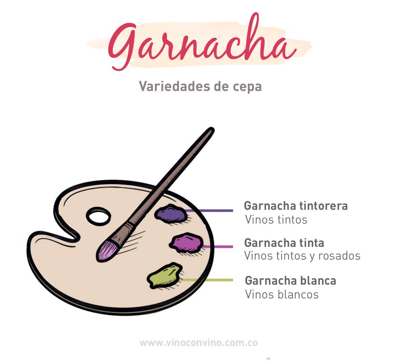 Variedades de la cepa Garnacha