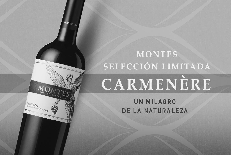 Vino recomendado: Montes Selección Carmenère