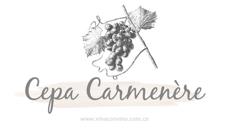 Cepa Carmenère