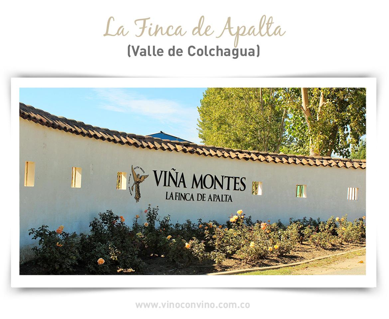 Finca Apalta. Valle de Colchagua