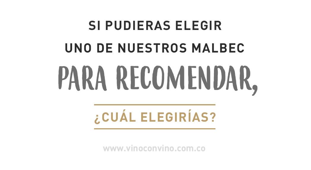Vinos malbec recomendados