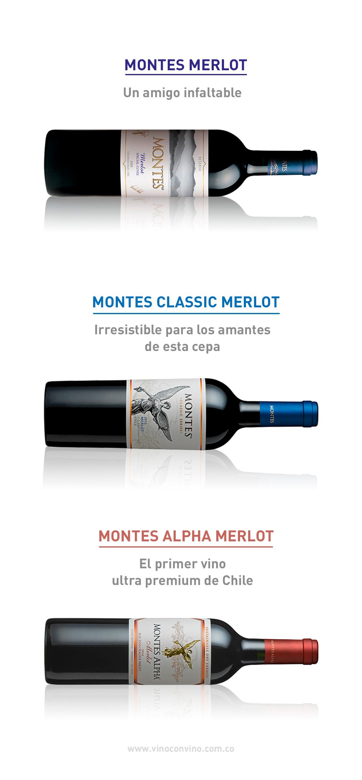Nuestros vinos merlot recomendados
