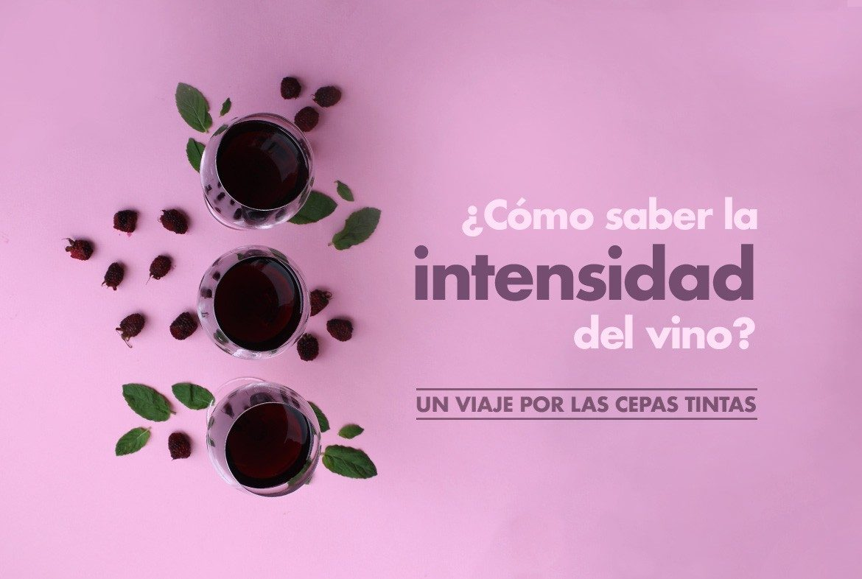 La intensidad del vino-Blog vino con vino