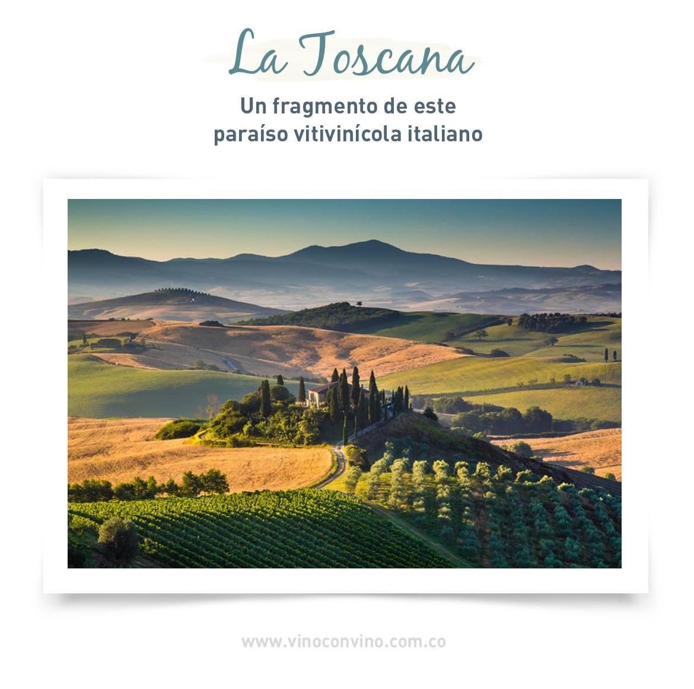La toscana -blog vinoconvino