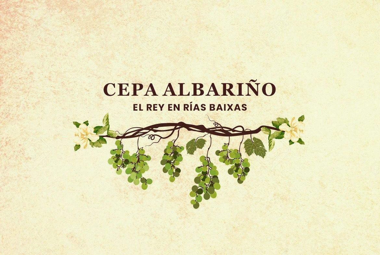 Cepa Alabariño- La reina blanca de España