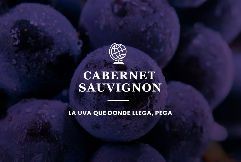 Cabernet Sauvignon: La uva que donde llega, pega.