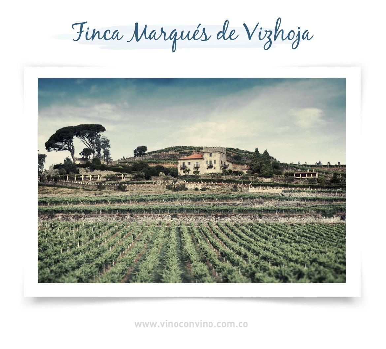 Viñedos Marqués de Vizhoja - Blog vinoconvino