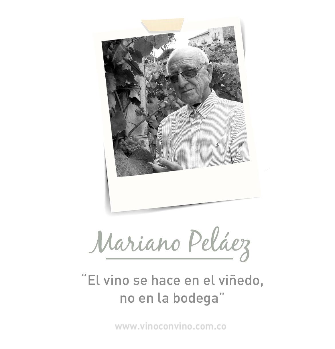 Don Mariano Pelaez- El paladar detrás de Marqués de Vizhoja