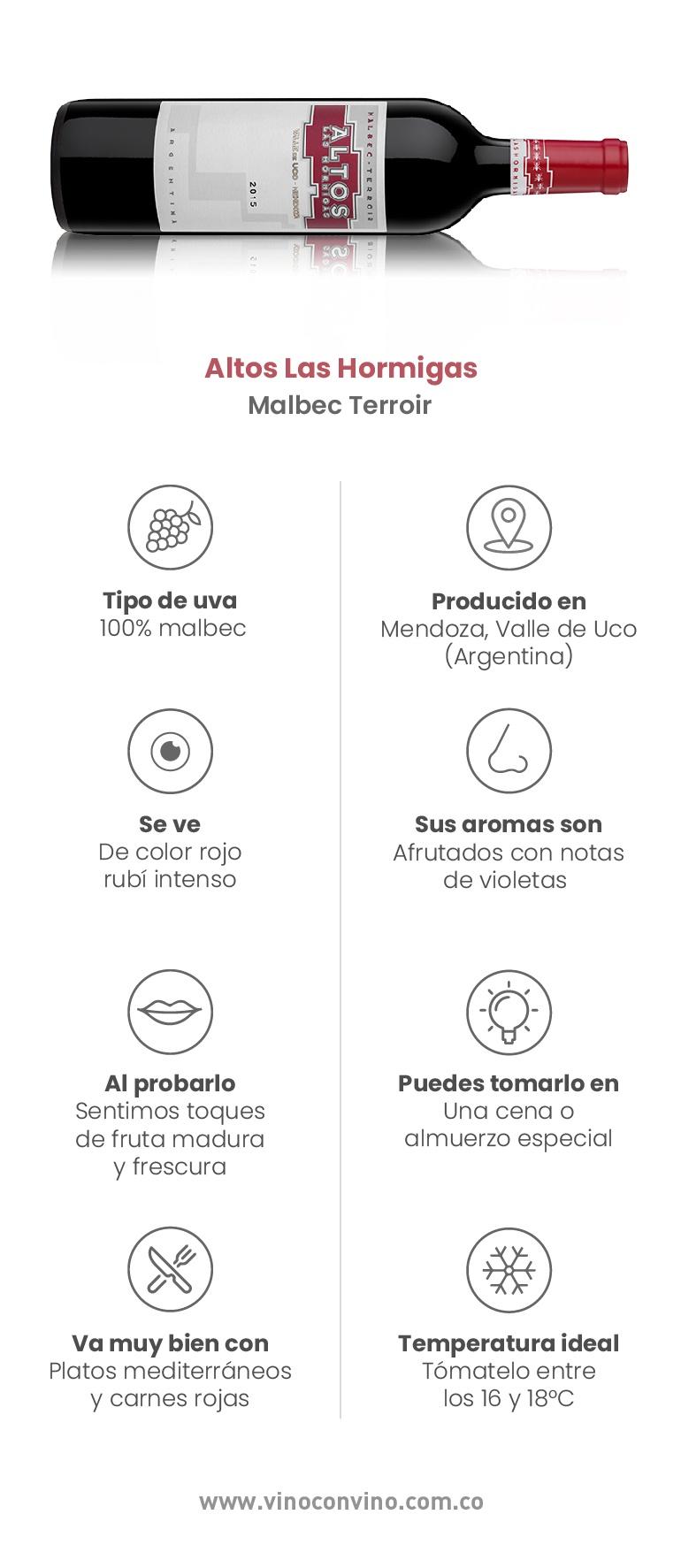 Altos Las Hormigas Malbec-Botellas que hay que probar