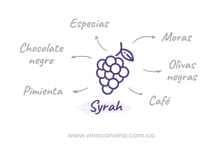 A qué sabe un syrah