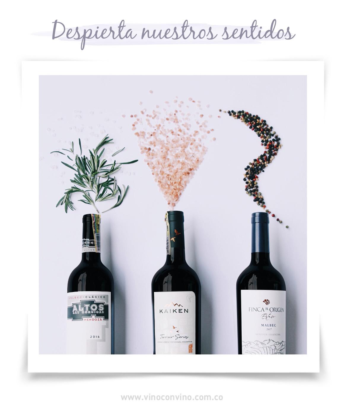 El vino tinto despierta nuestros sentidos - Blog vinoconvino