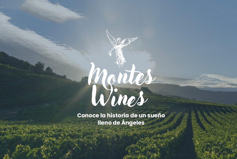 Montes Wines- La historia de una de las mejores bodegas Chilenas