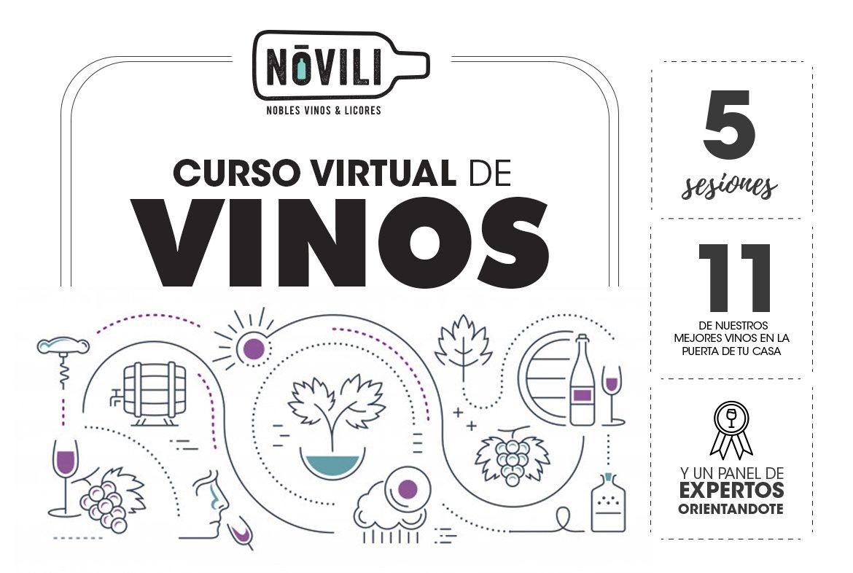 curso virtual de vinos novili