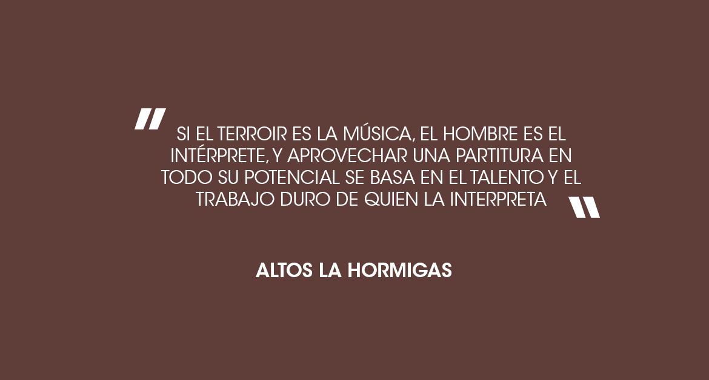 El Terroir, Altos Las Hormigas