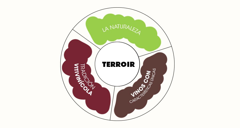 """¿Qué es el """"terroir en el vino?"""