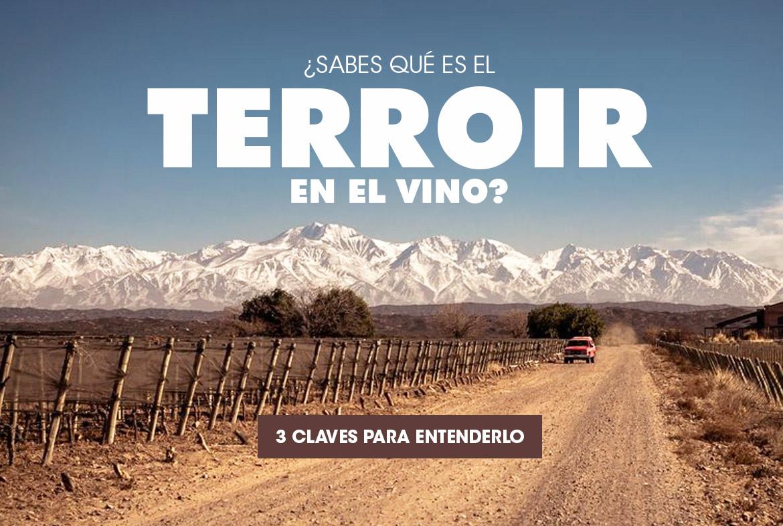 ¿Sabes qué es el terroir en el vino? 3 claves para entenderlo