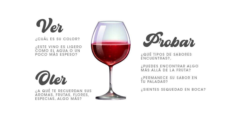 Ver, oler, probar para aprender sobre vinos