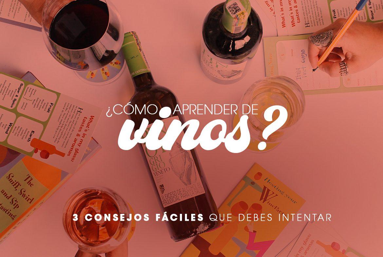 Cómo aprender de vinos - Nóvili