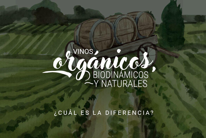 Vinos orgánicos, biodinámicos y naturales, ¿cuál es la diferencia? - Nóvili