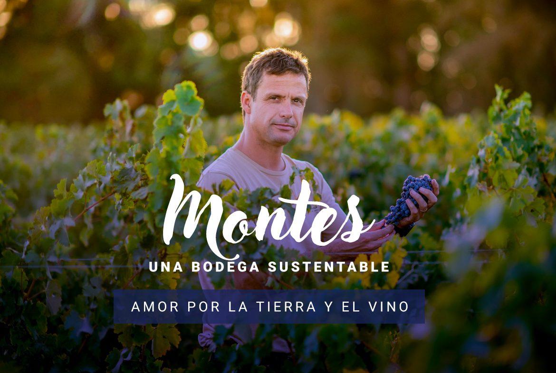 Montes una bodega sustentable: amor por la tierra y el vino